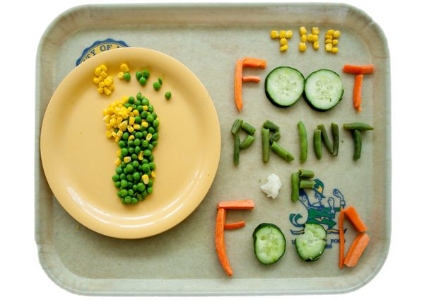 footprint_of_food.jpg