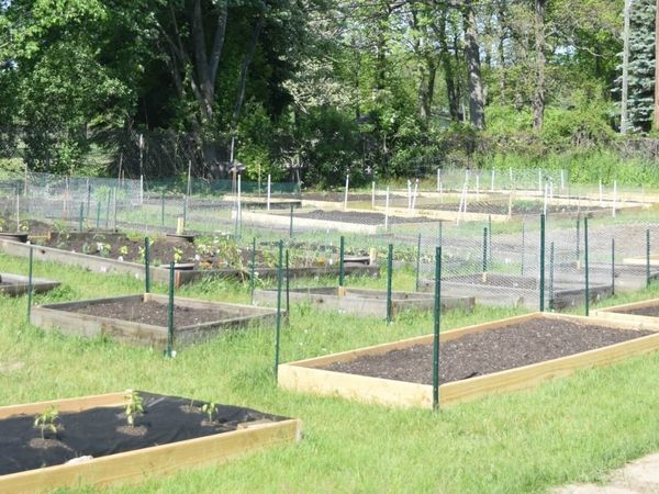 Notre Dame Campus Community Garden - New Location, Same Community Feel